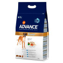 Advance Boxer Adult
