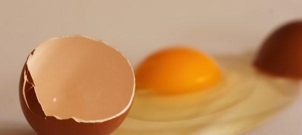 Huevos caseros: Ventajas de la producción en casa