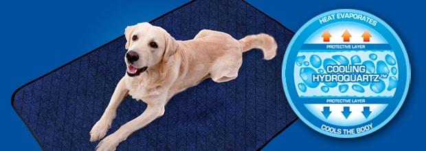 Aqua CoolKeeper - Productos Refrescantes para Mascotas