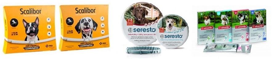 Eliminar parasitos externos de las mascotas