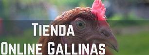 Tienda Online para Gallinas y Pollos