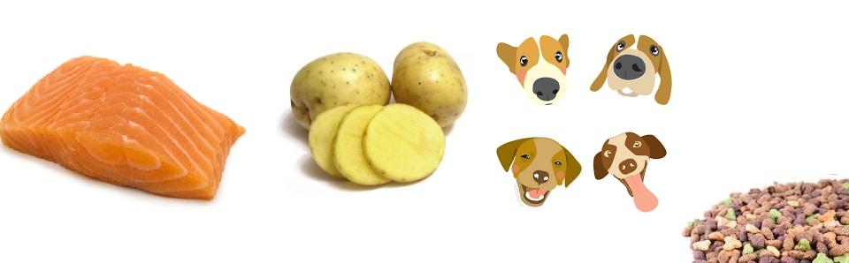 Piensos de salmon y patata para perros