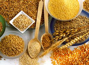 Cereales para la alimentación de gallinas y conejos