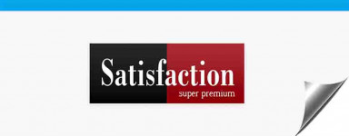 Pienso Para Perros Satisfaction